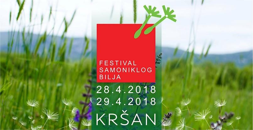 U tijeku je  9. po redu Festival samoniklog bilja u Kršanu