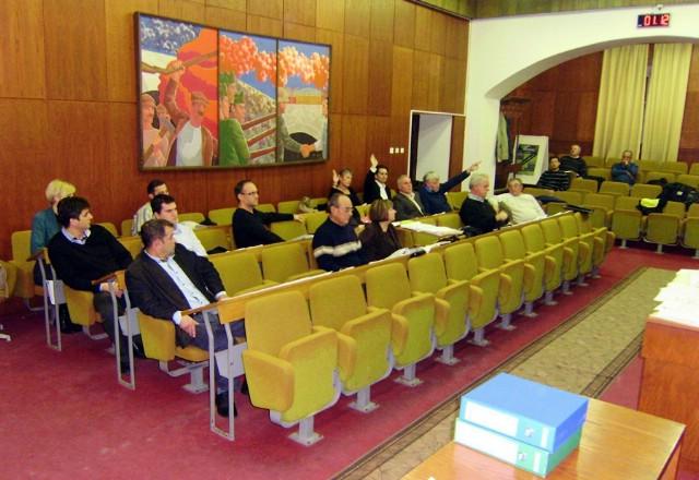 Deklaracija o regionalnom razvoju i jedinstvenosti Istre podijelila labinske vijećnike