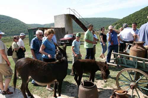 "Slovenski veterinari posjetili rezervat magaraca ""Liburna"""