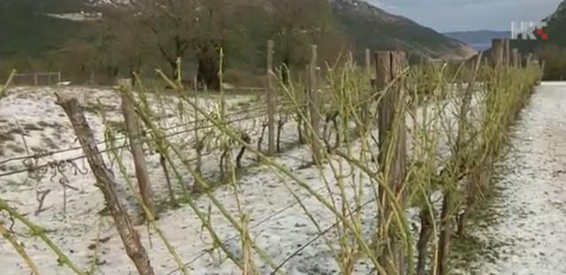 Ponovno zamućeno izvorište Plomin