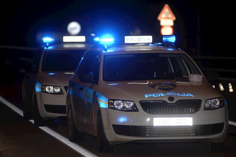 Kobila uginula nakon sraza s Peugeotom kojim je upravljao 46-godišnjak s područja Labina