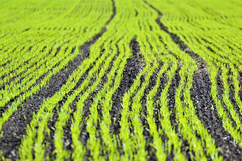 [OBAVIJEST] Objavljene izmjene LAG natječaja za TO 1.2.2. Potpora razvoju malih poljoprivrednih gospodarstava
