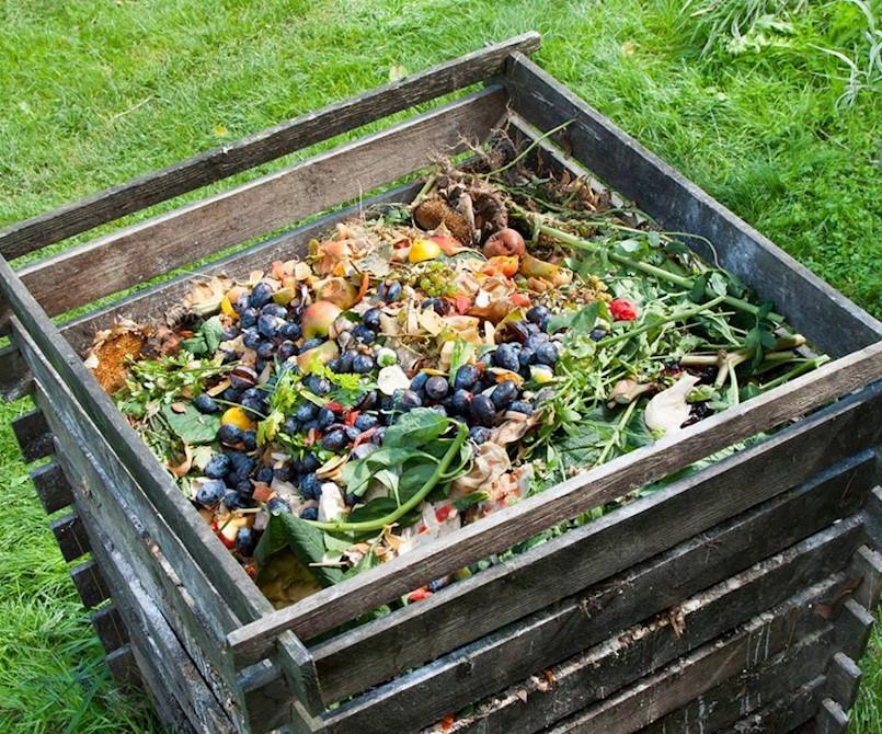 """Poziv na besplatnu radionicu  """"Komposta nikad dosta! Kompostiranje u stanu"""""""