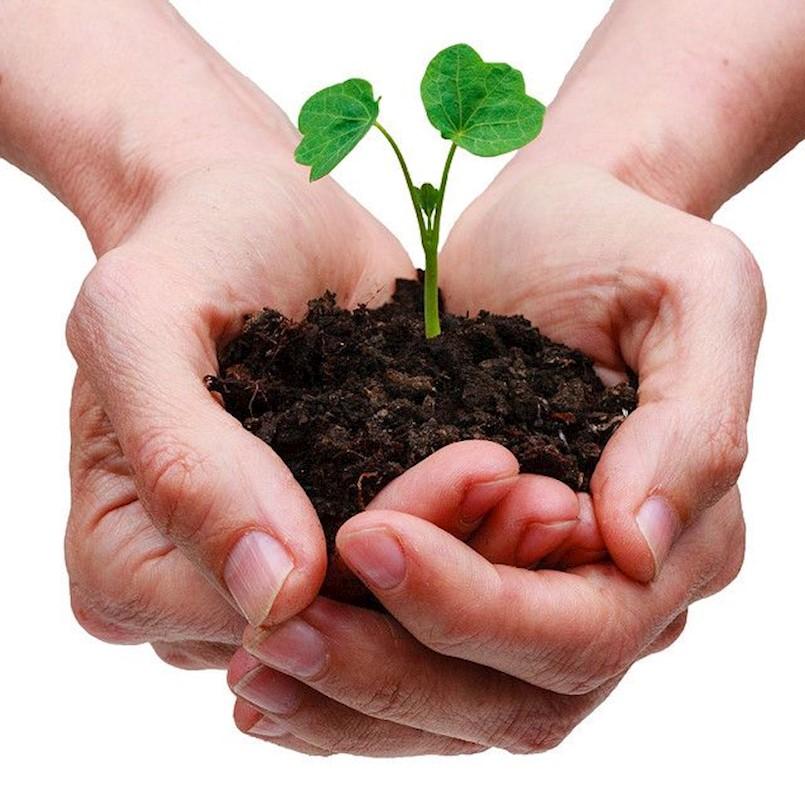 I udrugama Labinštine županijska sredstva u okviru javnih potreba poljoprivrede, šumarstva, lovstva i ribarstva