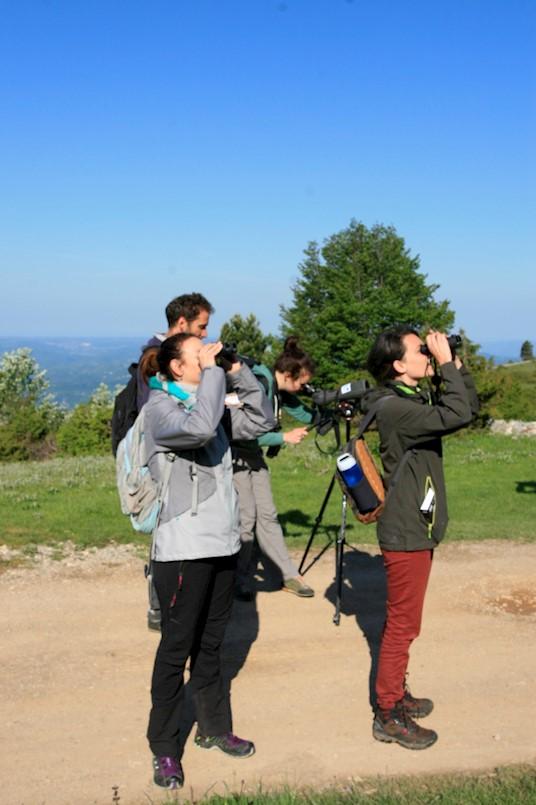 U Parku prirode Učka održana prva ornitološka edukacija za djelatnike javne ustanove