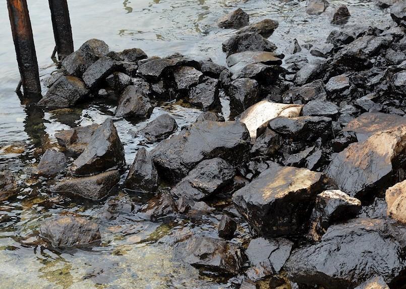 SIRIJCIMA PRIJETI DO 10 GODINA ZATVORA za onečišćenje Raškog zaljeva