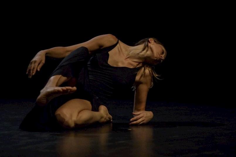Predstavljen program 19. Festivala plesa i neverbalnog kazališta Svetvinčenat