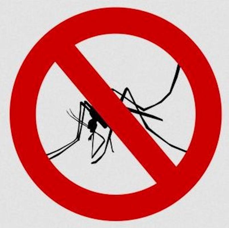 [OBAVIJEST] U četvrtak akcija suzbijanja komaraca na području Općine Raša