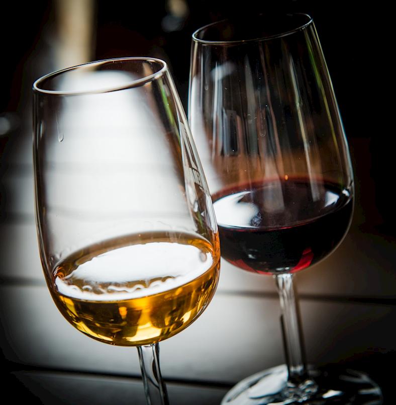 Udruga Trs organizira predavanje o njezi mladih vina