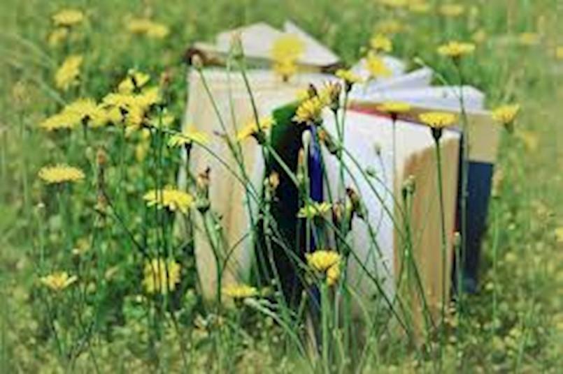 [OBAVIJEST] Otkazana utrka Izgubljeni herbarij u Kršanu
