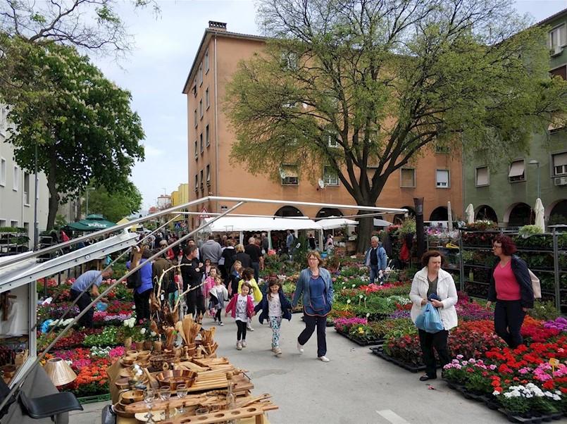 Tradicionalni Sajam cvijeća 11. put u Labinu