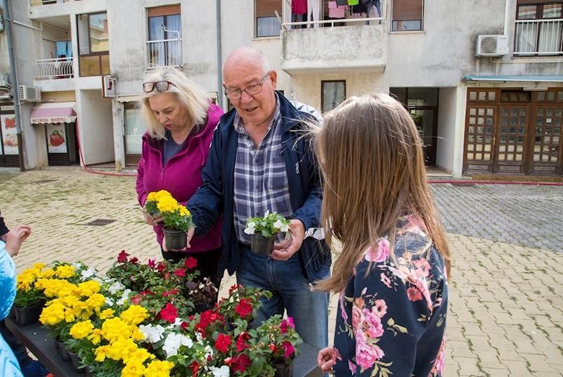 Labin Zdravi grad i mjesni odbori podijelili 2.300 sadnica građanima (fotogalerija)