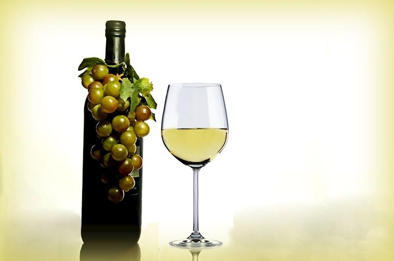 Fešta vina i turizma u Svetom Martinu