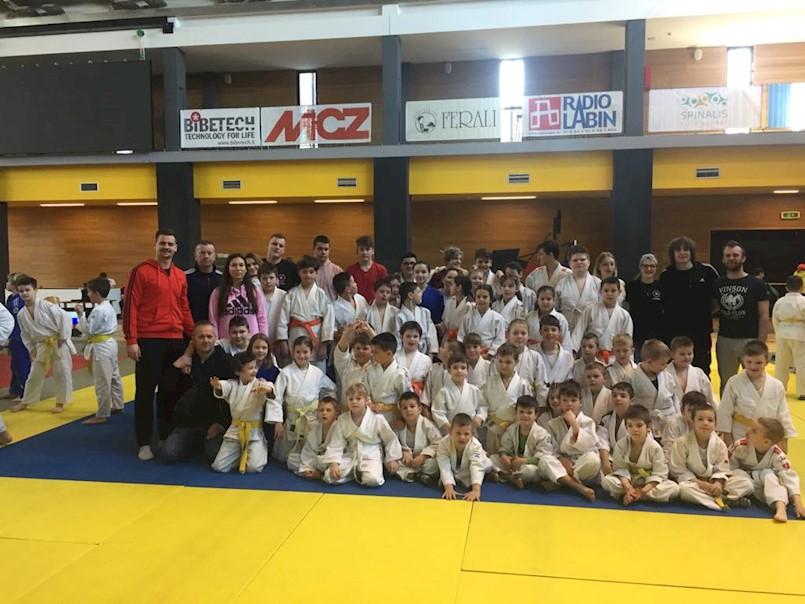 """Judo klubu METO Labin u ukupnom poretku međužupanijskog natjecanja """"IPPON 2019"""" u konkurenciji 13 klubova treći"""