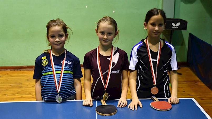 Mladi stolnotenisači Brovinja osvojili su jedno zlato i jednu broncu na Trećem otvorenom turniru PIG regije