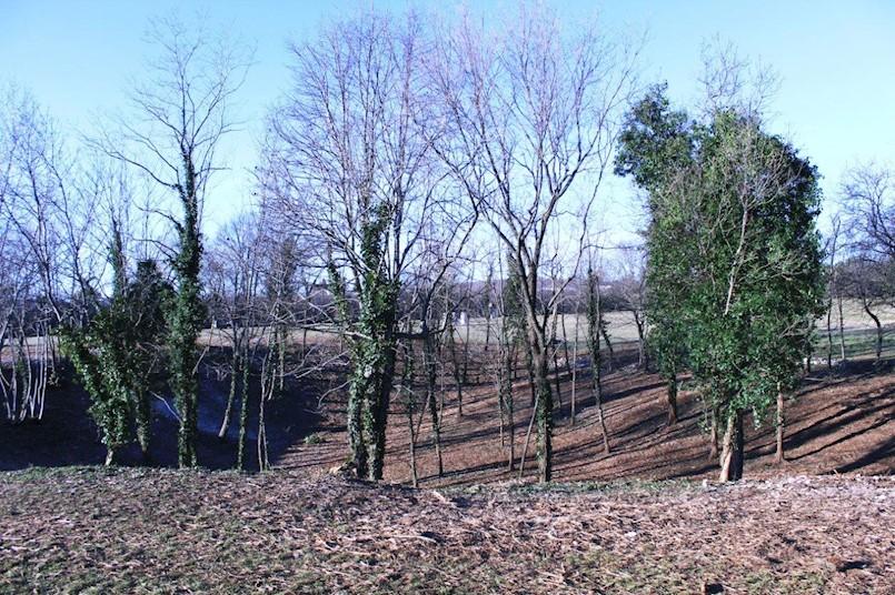 Nastavlja se uređenje Parka skulptura Dubrova