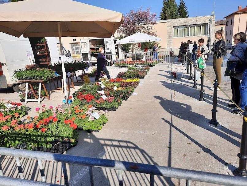 U subotu 2. svibnja još jednom prodaja cvijeća na Trgu labinskih rudara