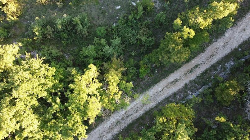 Općina Kršan poziva na dostavu ponuda za radova na asfaltiranju novih i popravku postojećih nerazvrstanih putova