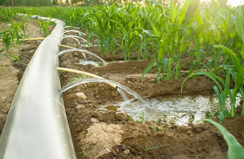 Od 1. ožujka počinje naplata tzv. poljoprivredne vode