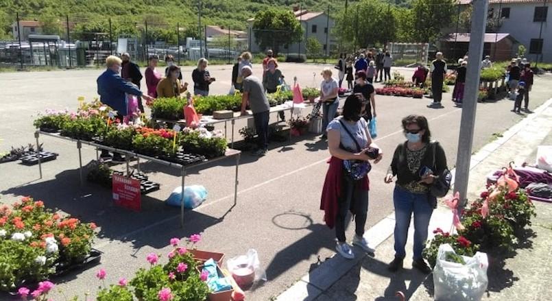 Privatnim iznajmljivačima na području Općine Kršan podijeljeno cvijeće