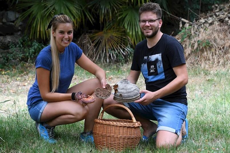 LABINJAN ELVIS RAJKOVIĆ ELVINJO jedan je od najboljih poznavatelja gljiva u Istri. O gljivama je učio od nonića, a danas pomoću njih DRUGIMA RJEŠAVA ZDRAVSTVENE PROBLEME