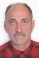 Damir Pavlinović
