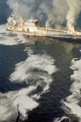 Bez luka zakloništa osuđeni smo na ekološku katastrofu