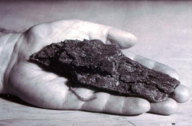 Obitelj Čendak iz Jelovica čuvari su stoljetne tradicije proizvodnje drvenog ugljena na Ćićariji