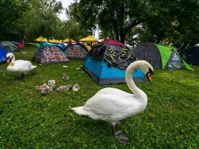 INmusic kamp spremno čeka prve posjetitelje!