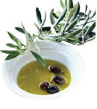 Najprepoznatljiviji istarski proizvod je maslinovo ulje