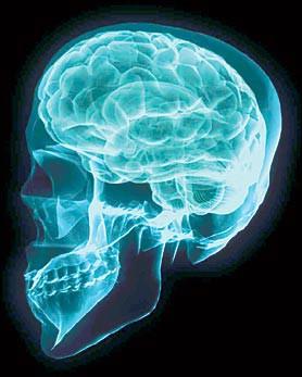 Zaključana tajna u mozgu