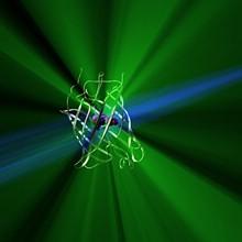 Nobel za otkriće zelenog fluorescentnog proteina i za otkrića na području subatomske fizike