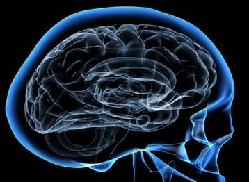 Što tehnologija čini našim mozgovima?