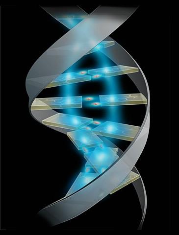 Analiza DNK za 25 minuta