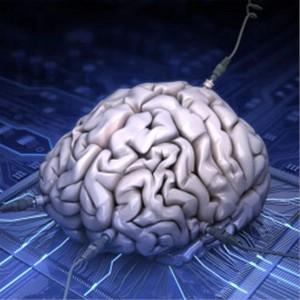 Koliko je brz mozak?