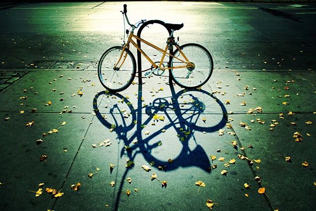Biciklom za zdrav život u humanitarnoj akciji (Pazin - Žminj - Gračišće)