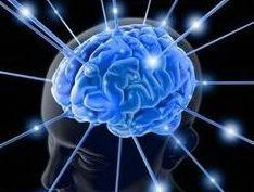 Otkriće još jedne tajne mozga