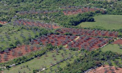 Labin, Pićan, Raša i Barban nemaju važeći program raspolaganja zemljištem u vlasništvu države