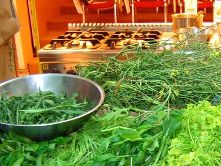 Ovaj vikend počinje Festival samoniklog bilja u Kršanu