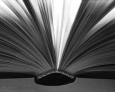 PREDSTAVLJENA MONOGRAFIJA «RAŠA MOJE MLADOSTI» AUTORA MARIJANA MILEVOJA