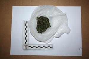 Trojac iz Labina uhićen zbog zlouporabe opojnih droga