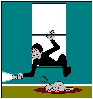 Labin: Pronađen provalnik u kuću