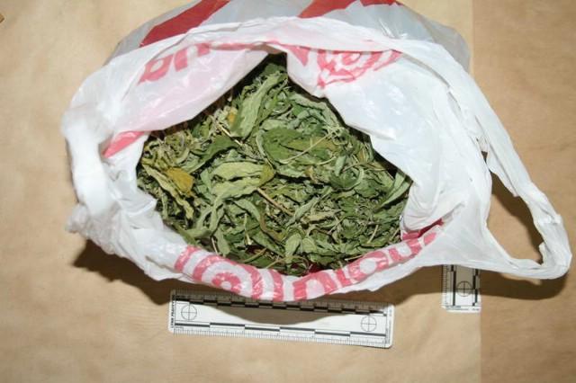 ''Dilao'' marihuanu na području Labina