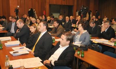 Sa županijske skupštine: Rockwool ne radi u interesu Istre
