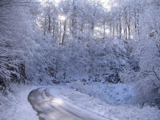 Pogledajte snježnu idilu na vrhu Učke!