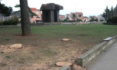 Napokon uklonjena stabla i granje