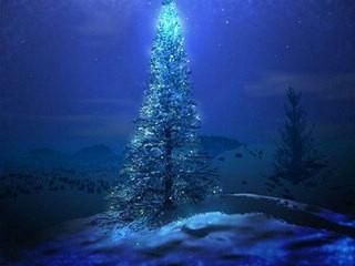 Miran Božić u Istri