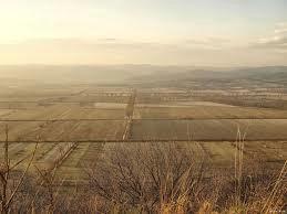Općina Kršan raspisuje Javni natječaj za zakup poljoprivrednog zemljišta