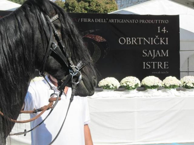 """Obrtu za trgovinu i proizvodnju mesa """"Meso Labin-Pršutana Bani"""" iz Labina druga nagrada na Obrtničkom sajmu Istre"""