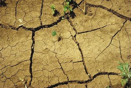 Obavijest o proglašenju elementarne nepogode na području Općine Kršan